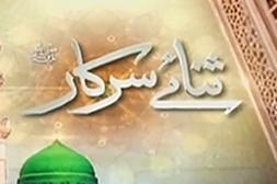 Sana-e-Sarkar S.A.W.W